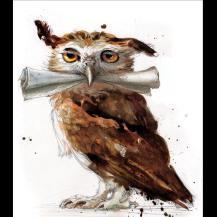 HP1_Owl-large